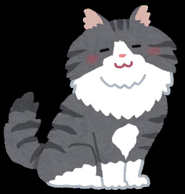 cat_norwegian_forest_cat