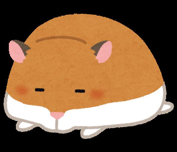 hamster_sleeping