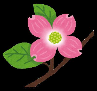 flower_hanamizuki.png